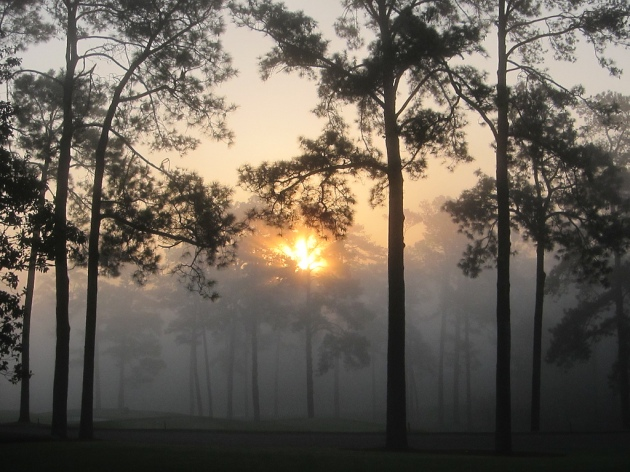 Augusta National Sunrise